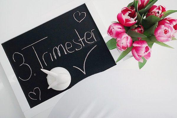 Wenn aus Liebe Leben wird - Mommy´s World - Schwangerschaft - Drittes Trimester