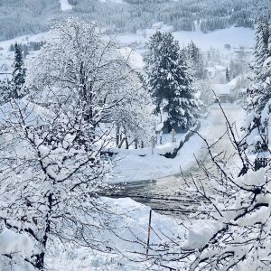 Wenn aus Liebe Leben wird - Travel - Österreich